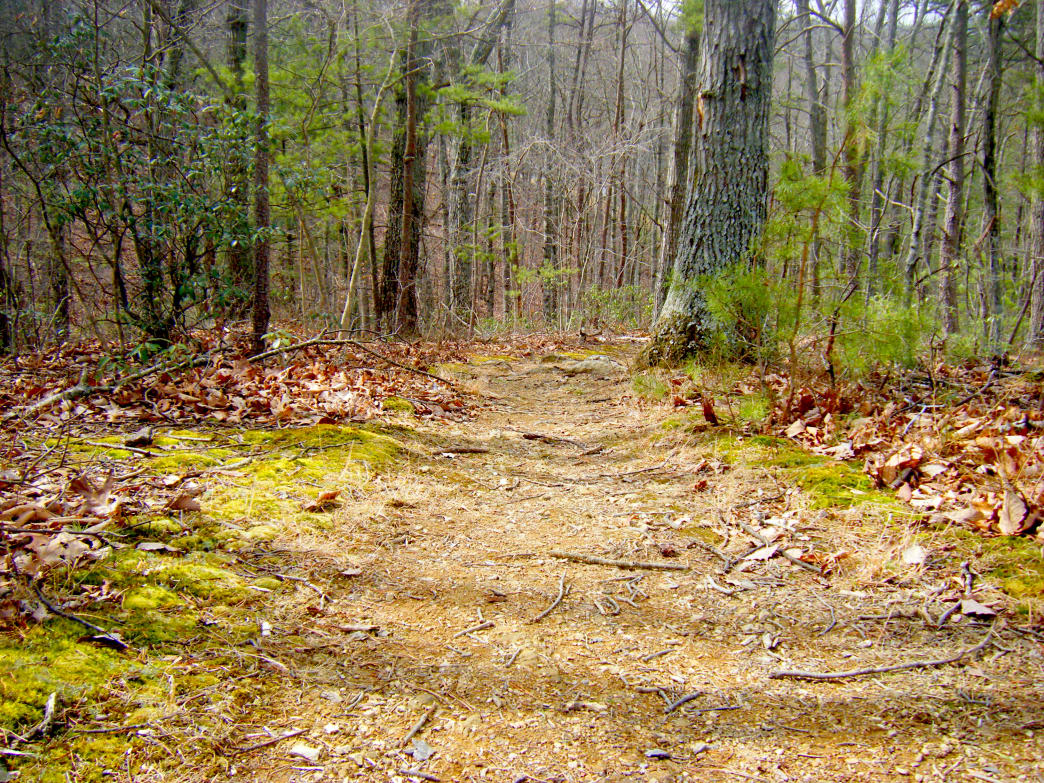 The trail has plenty of climbing and technical sections.