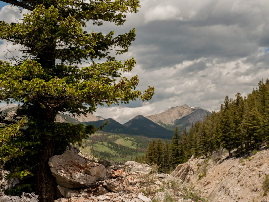 The Bob Marshall Wilderness, easily accessible from many points in Central Montana, is just one of the natural areas that make this section of the state perfect for an outdoor getaway.