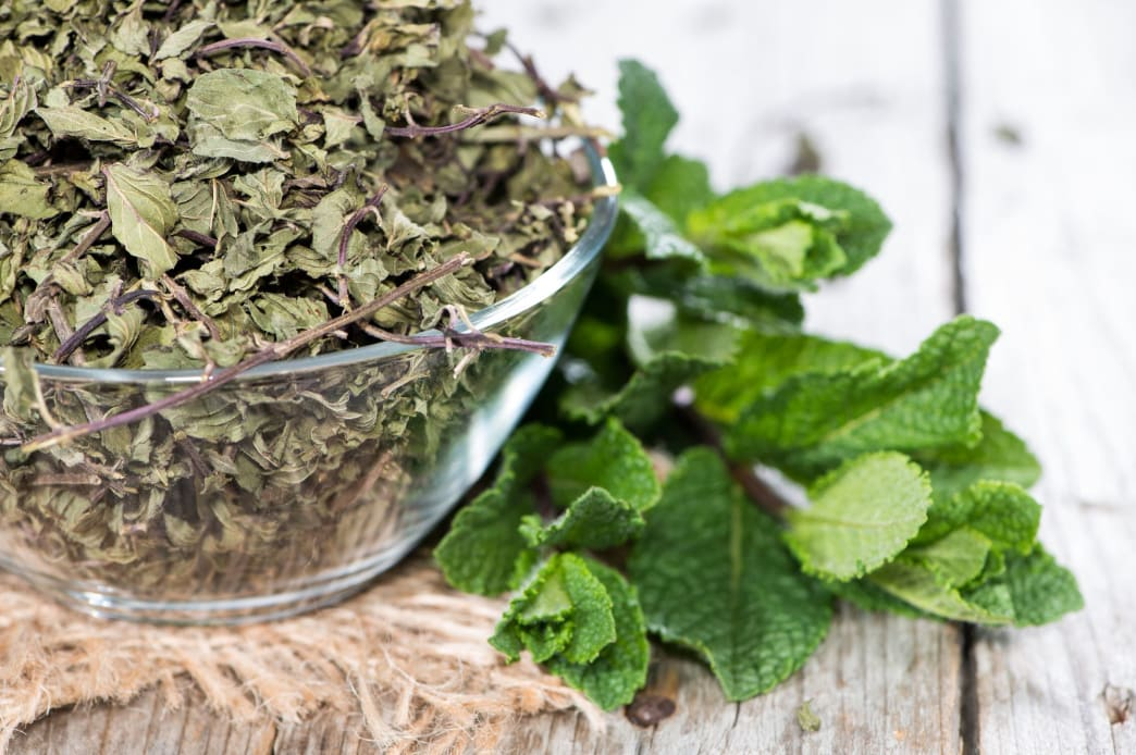 Dry mint can be a perfect addition to delicious tea in the middle of winter.