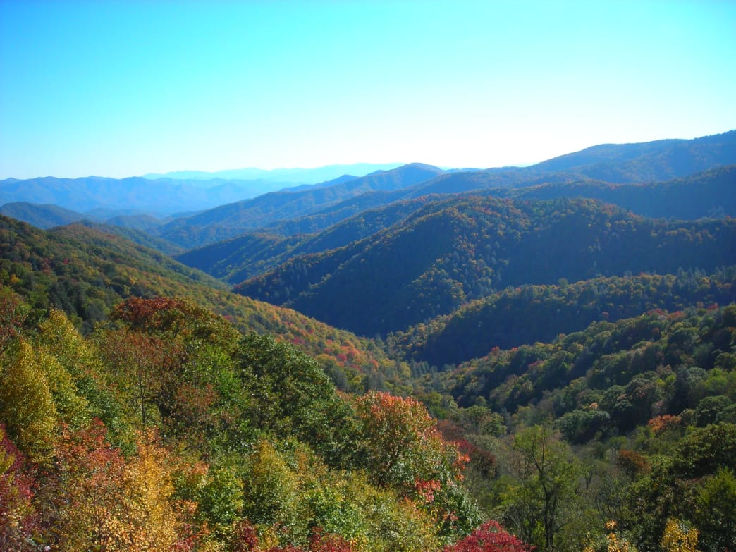 Fall colors starting to show near Newfound Gap