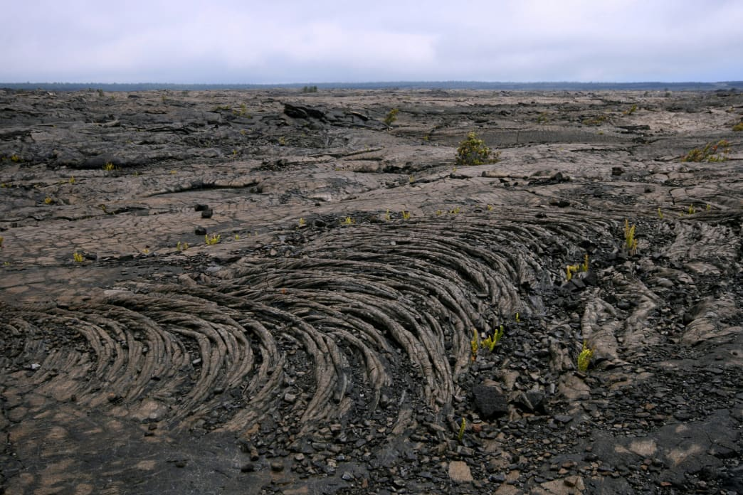A hardened lava field at the park.