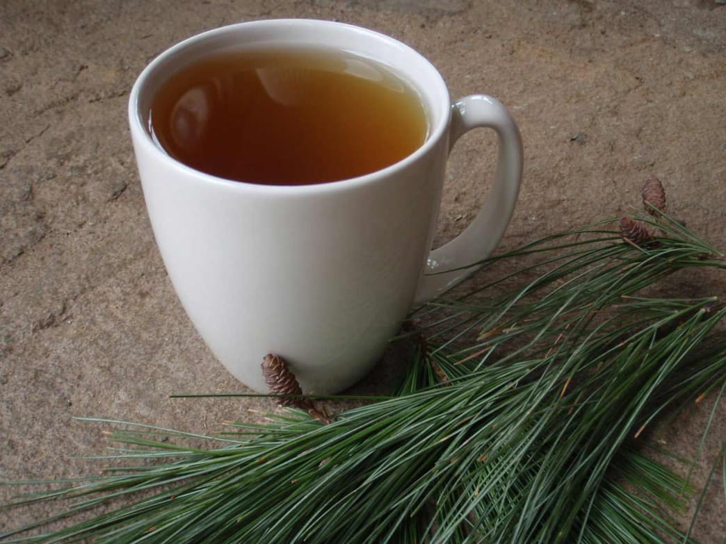 You'll never get scurvy with an occasional cup of this piney brew. Tea made from edible evergreen needles is loaded with Vitamin C.