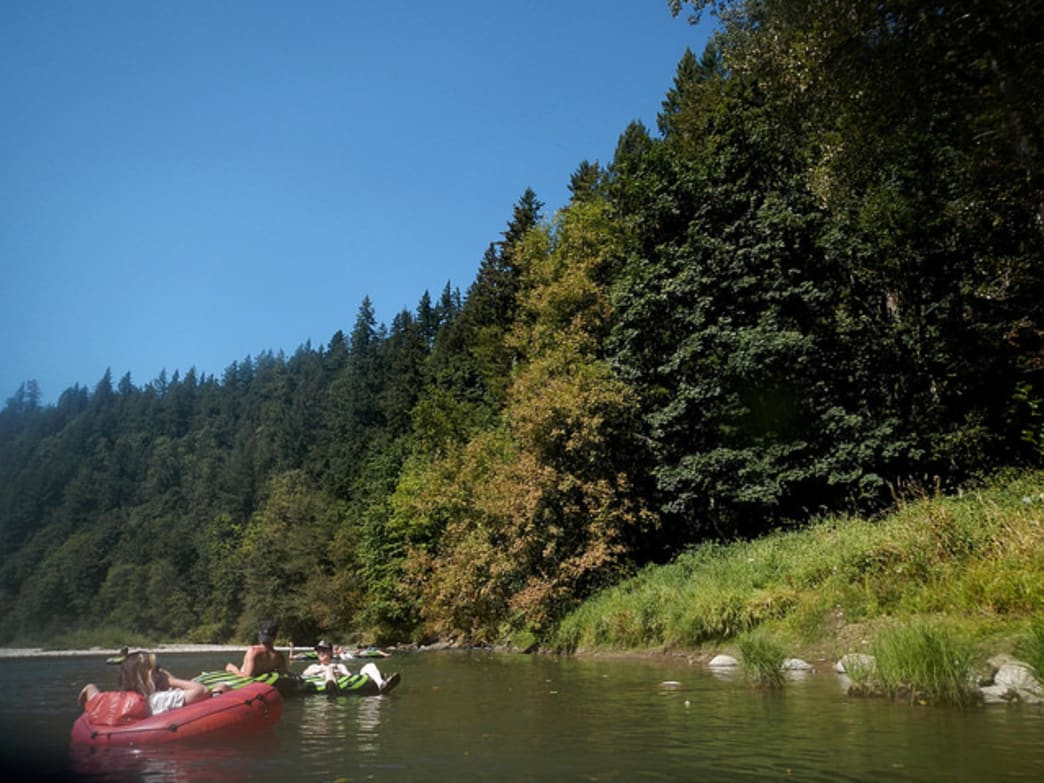 The banks along the upper Sandy River are awash in thick, green forests.