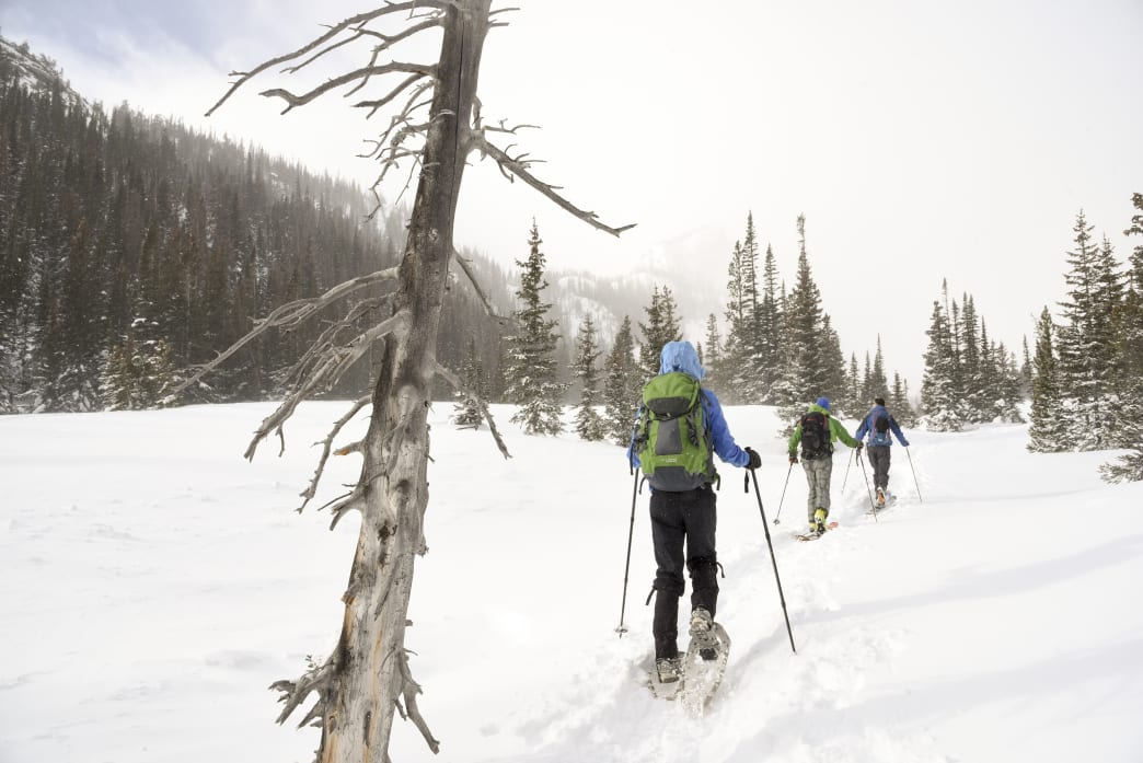 Snowshoeing at Rocky Mountain National Park