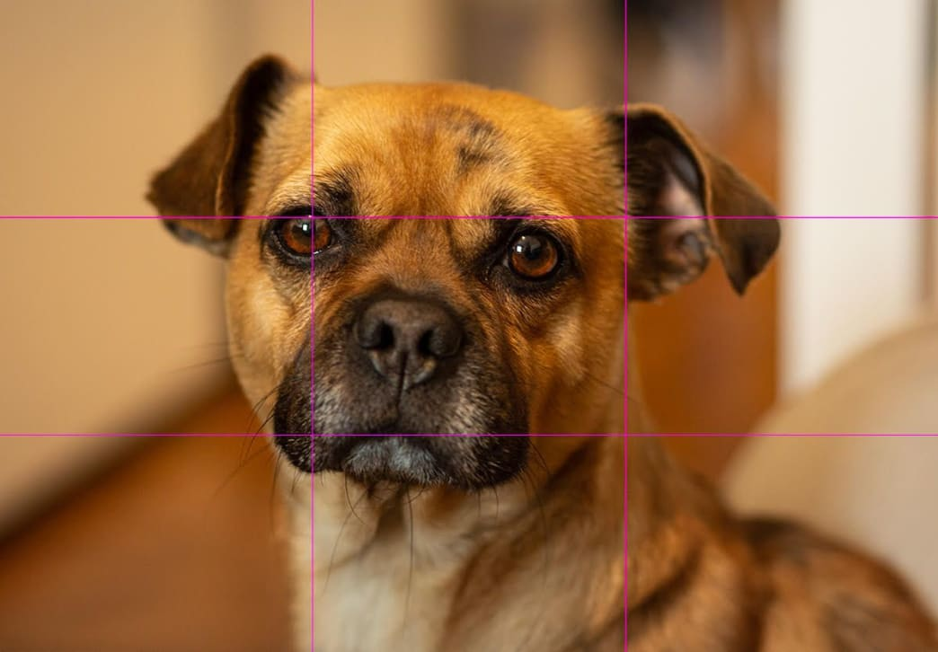 Relying too much on the rule of thirds makes Bing sad. You don't want to make Bing sad.