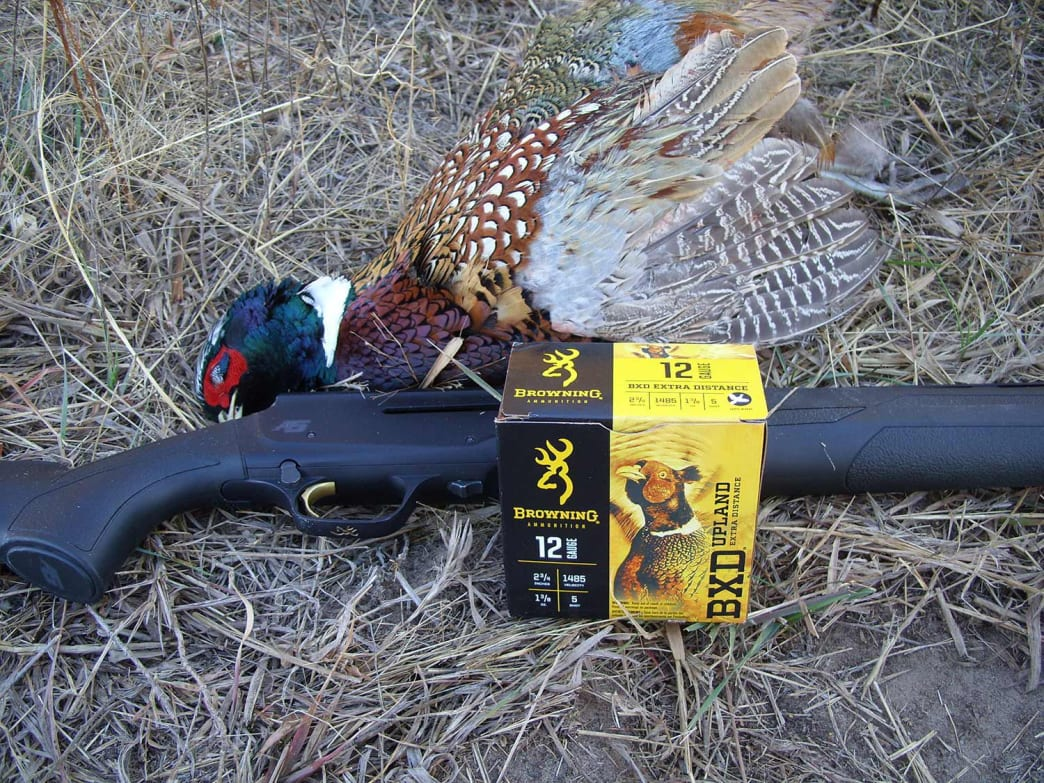 A lightweight 12-gauge and a heavy pheasant load with plated shot are key tools for late-season success.