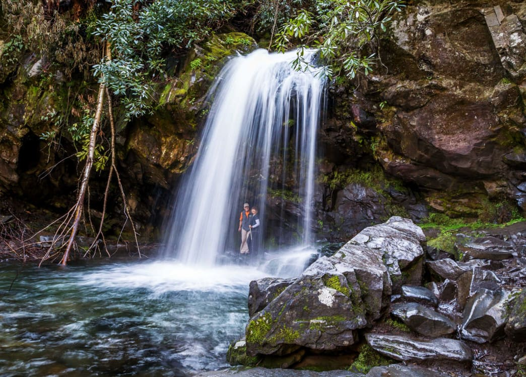Grotto Falls is one of the only waterfalls in East Tennessee that you can safely stand behind.