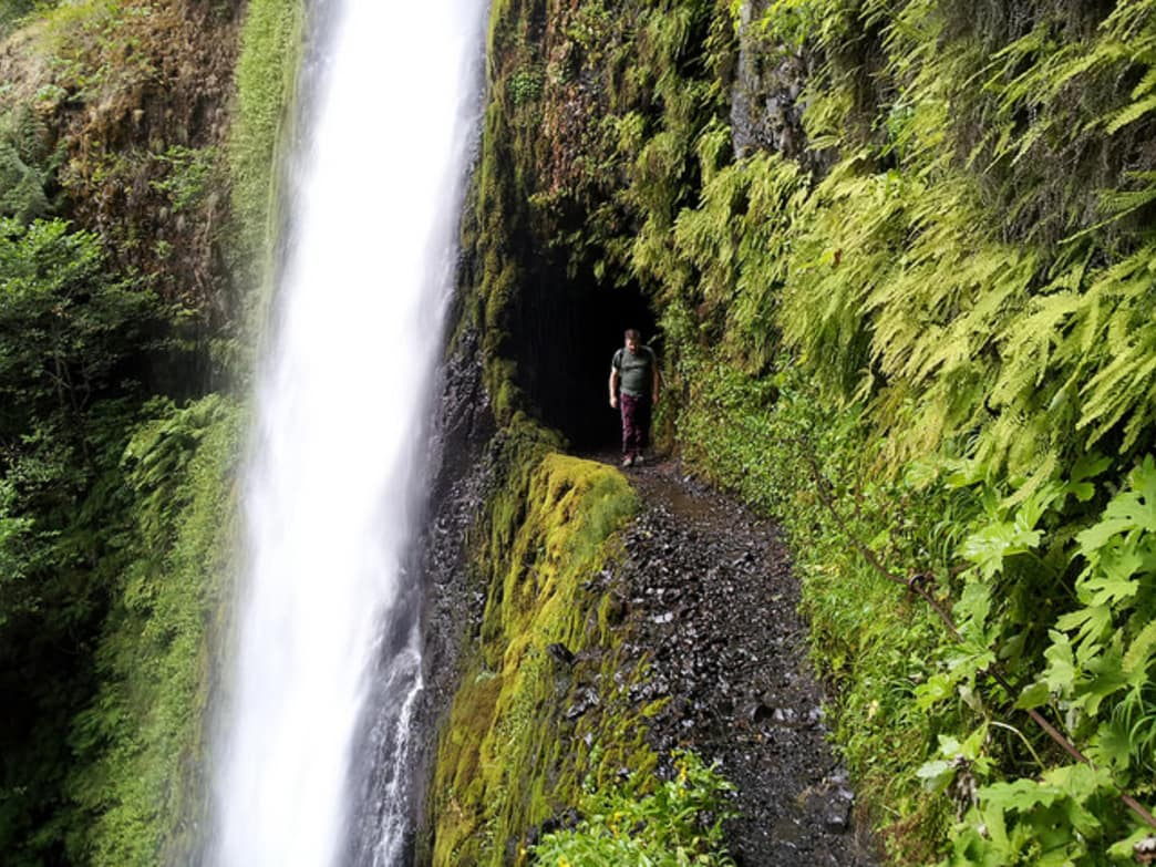 Hikers get to walk behind the impressive Tunnel Falls along the Eagle Creek Trail.