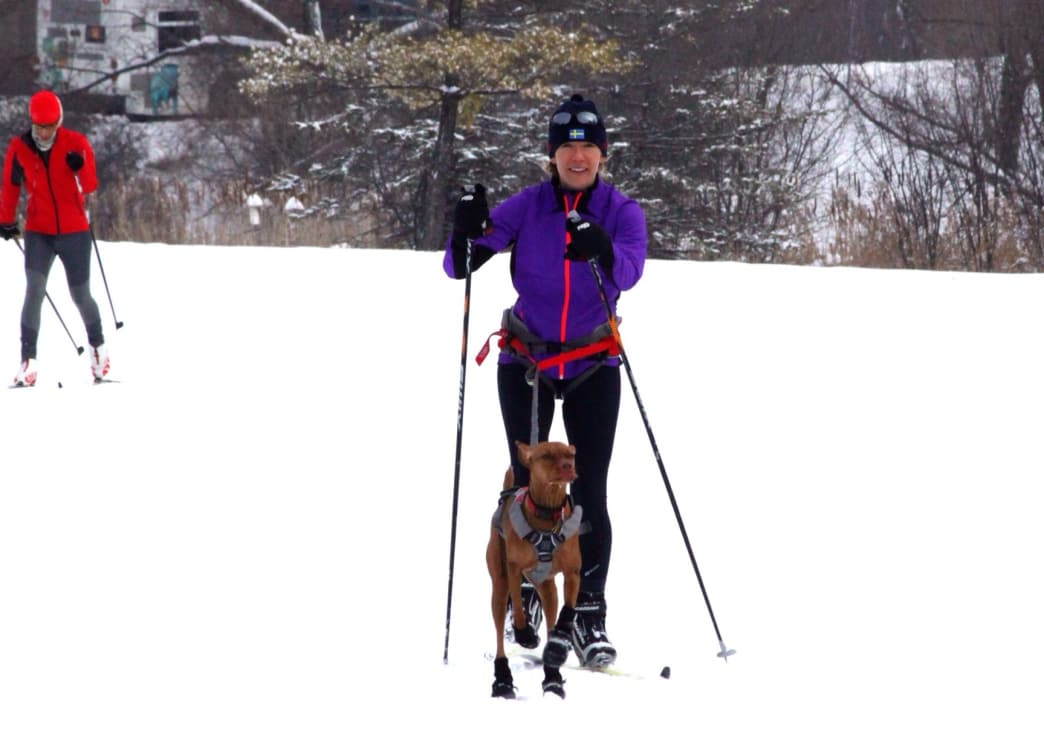 Theodore Wirth Park features 15 miles of beautiful groomed trails.
