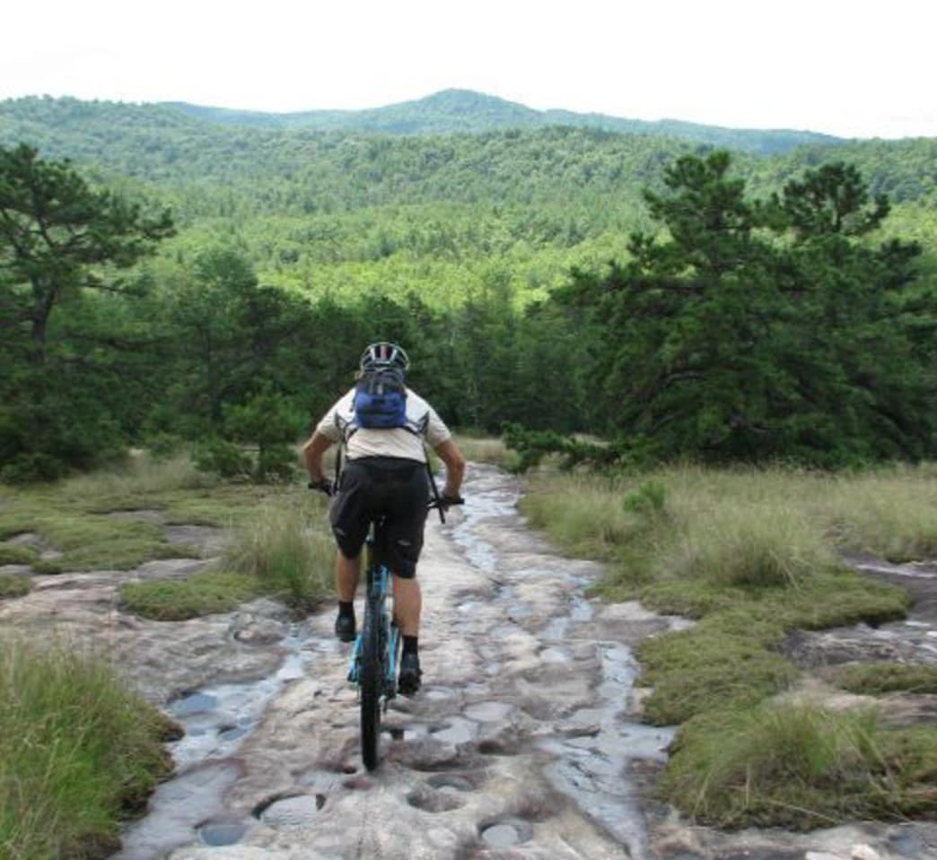 A guided tour will help you find some epic rides.