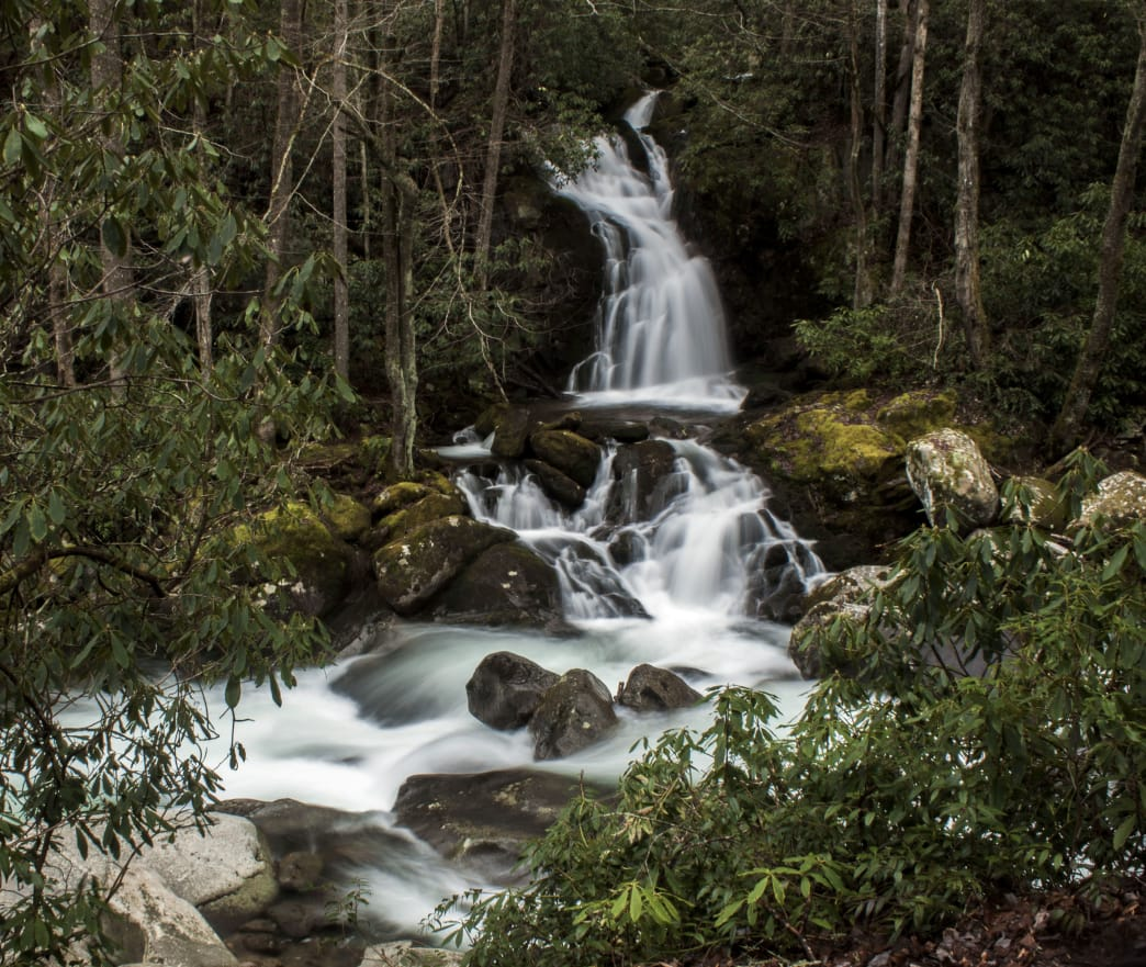 The hike to Mouse Creek Falls is great for less experienced hikers.     Kristi Parsons