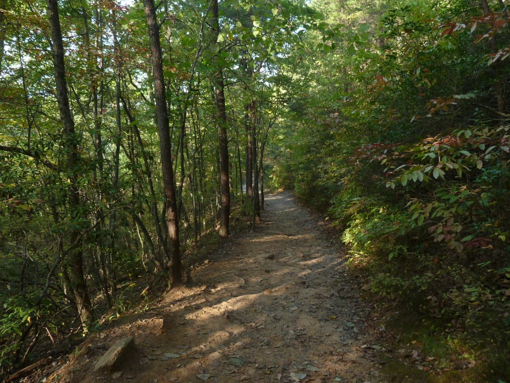 Hundreds of miles of Charlotte-area trails offer a shady respite from hot afternoons.    Rob Glover