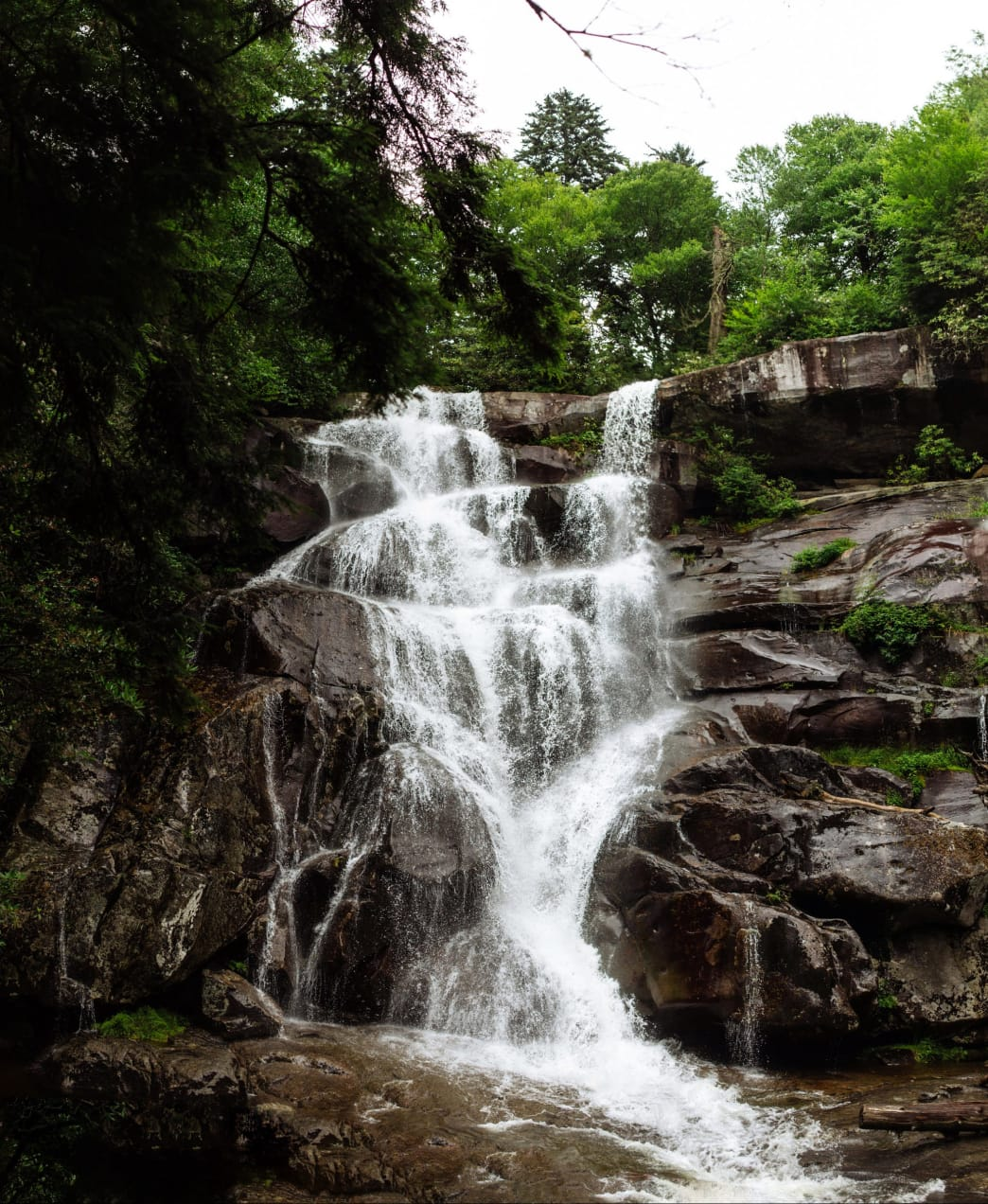 The Ramsey Cascades trail is one of the most beautiful and refreshing summer hikes in the Smokies.
