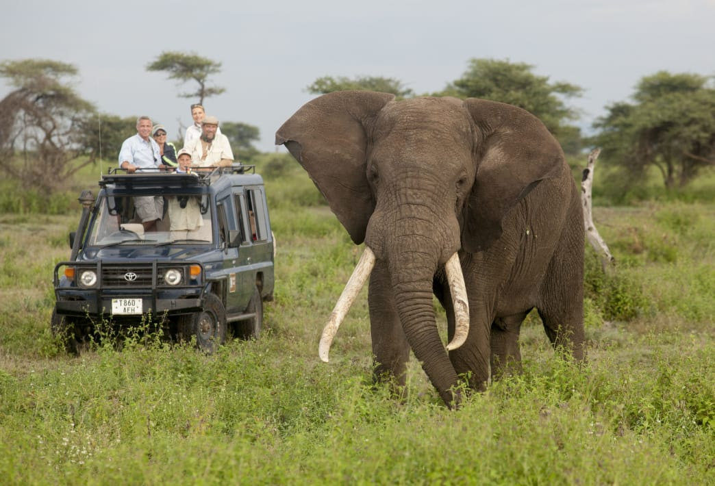 Nat Hab works with responsible local tour operators.