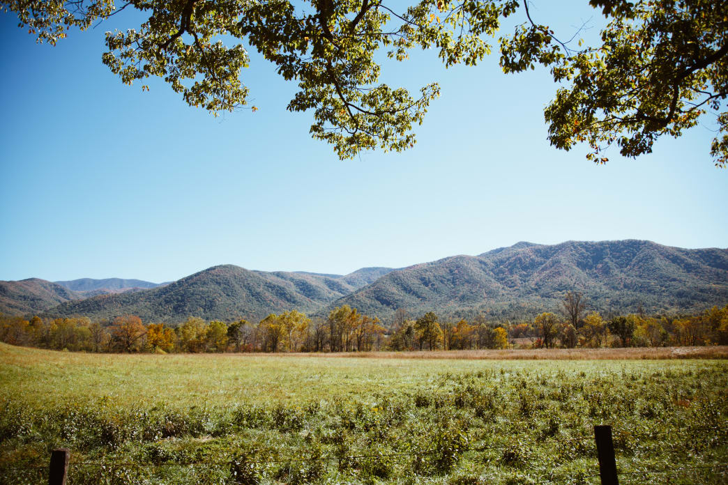 Cades Cove is primarily an 11-mile loop, with scenic views and access to a handful of trailheads. Lauren Brooks