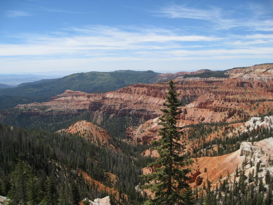 In the vast open spaces of Cedar Breaks, old bristlecone pines carpet the redrock landscape.
