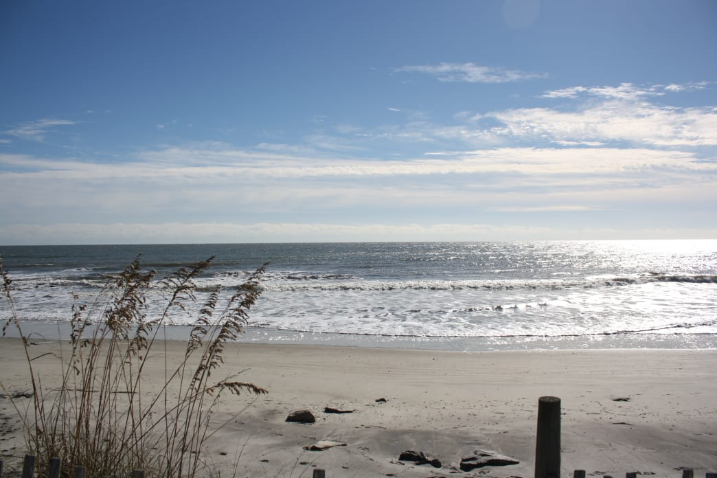Charleston is blessed with plenty of beaches to enjoy surf fishing.