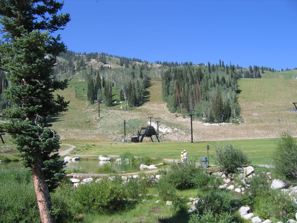 Disc golf is a popular summer pastime at Solitude.