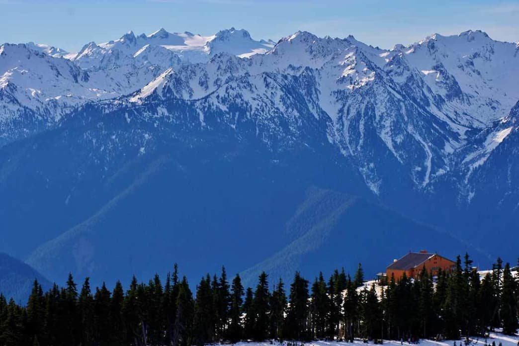 The view of Hurricane Ridge and Mount Olympus from Sunrise Ridge