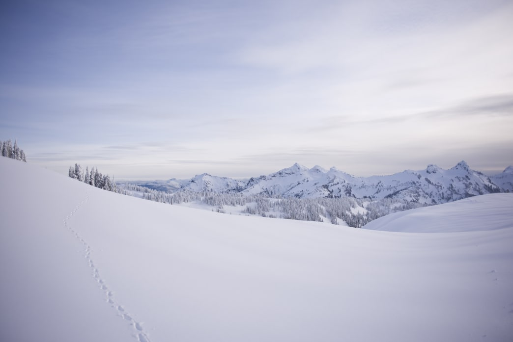 Serene vistas like this await snowshoers in Rainier National Park.