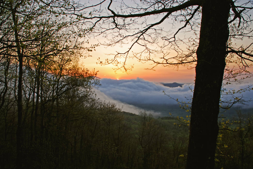Black Rock Mountain State Park is Georgia's highest state park.