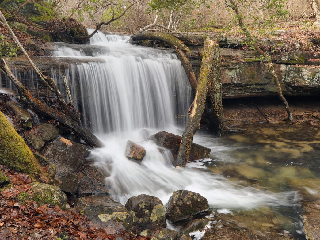 Alabama State Parks in the winter are worth visiting.