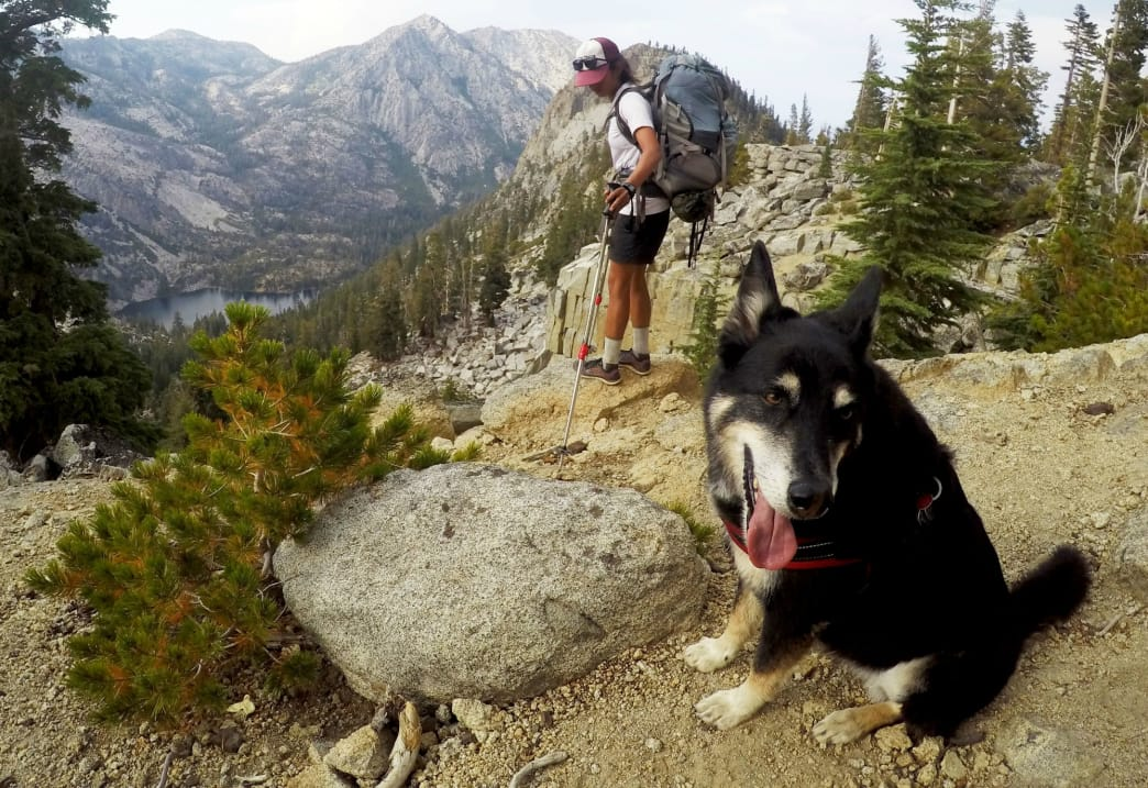Shylie hangs her tongue after climbing to the top of the Bayview Trail. Eagle Lake is seen from above. Jacob Meyberg