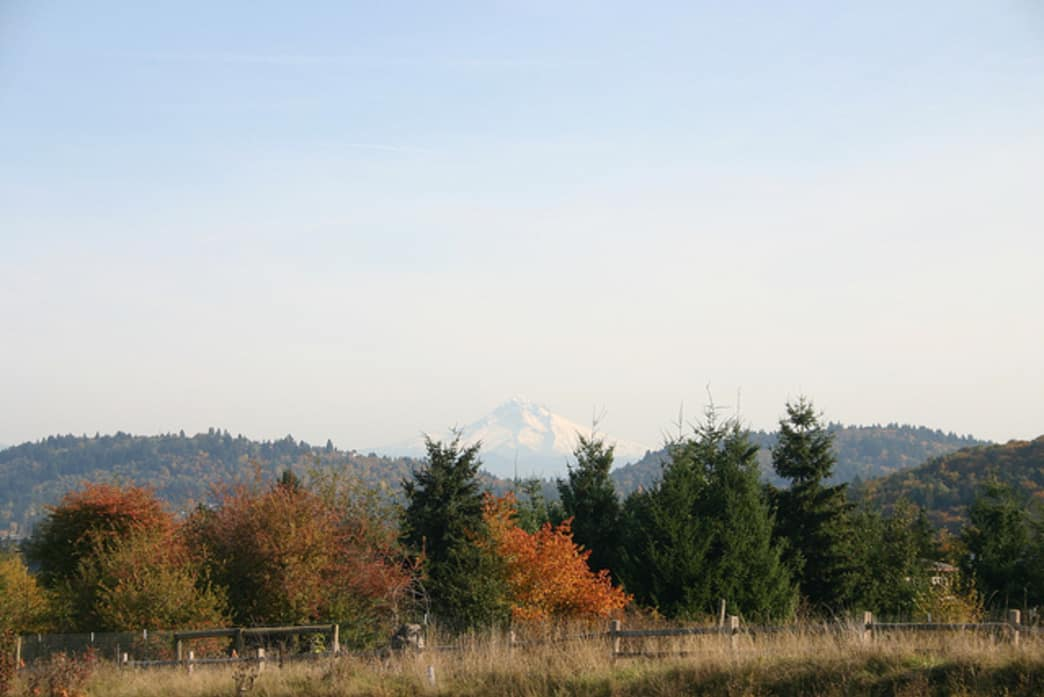 Powell Butte Nature Park offers breathtaking views of Mount Hood.
