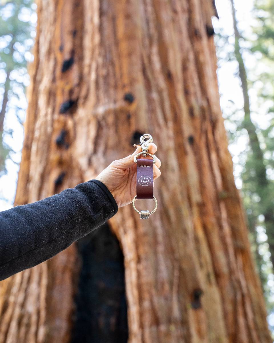 A hand holding up a leather token holder from The Wander Club in front of a tree in Sequoia National Park