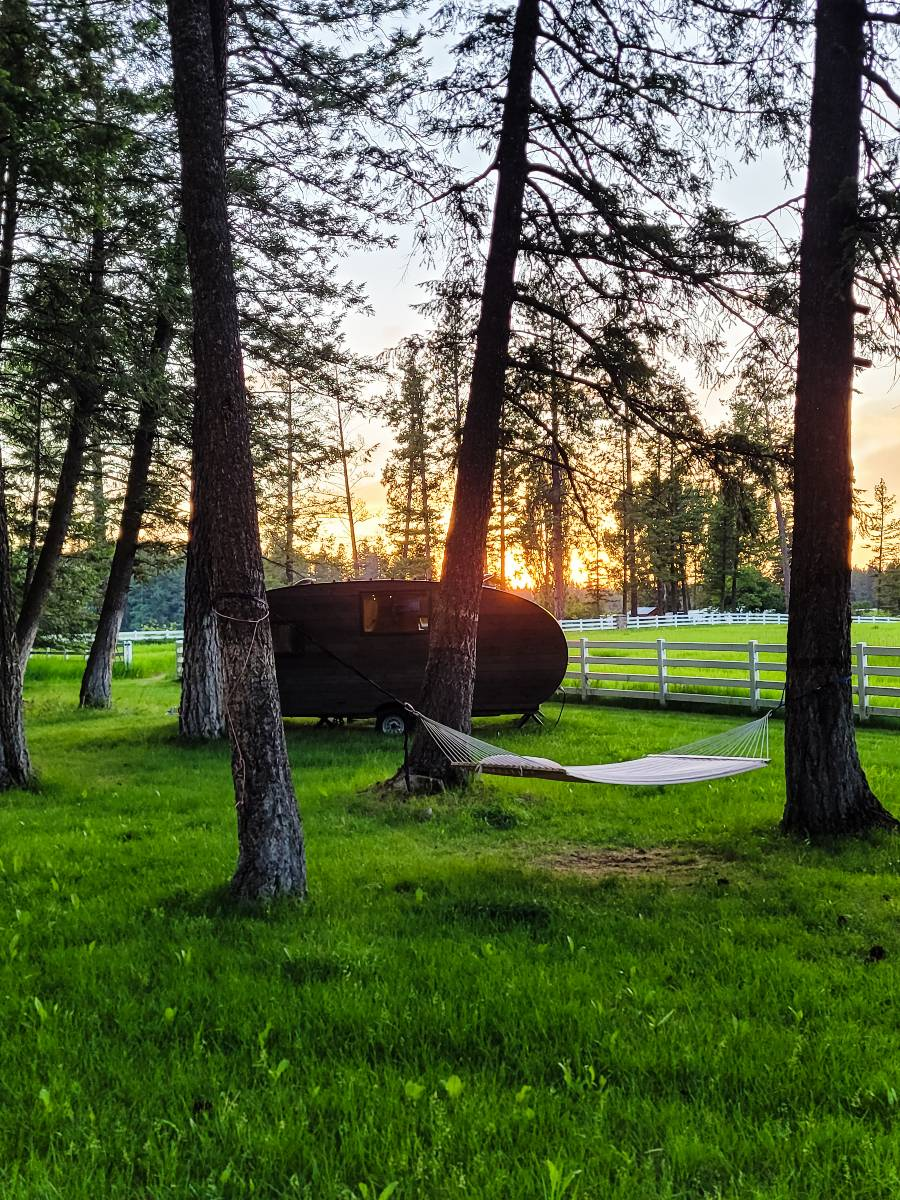 A roaming cabin and hammock surrounded by trees at sunset at ROAM Beyond, one of the best national park hotels